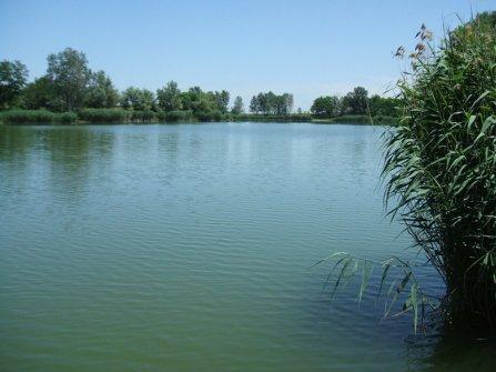 A horgásztó látképe