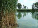 Nádöblök a horgásztónál
