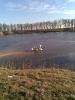Horgásztó fotógaléria