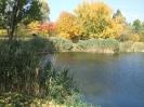 Őszi horgásztó